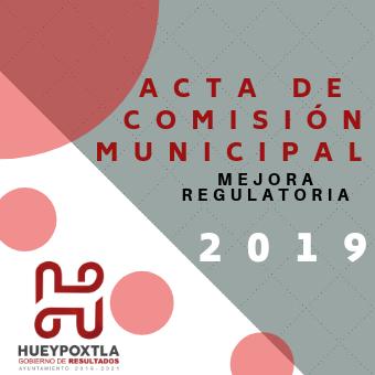 ACTAS COMISIÓN MUNICIPAL