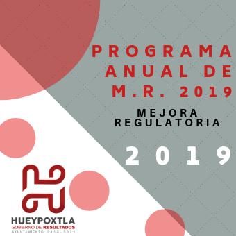 PROG ANUAL DE M. R.  2019