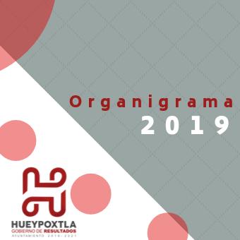 Organigrama 2019